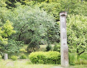 【茨城・水戸】水戸に来たら外せない!梅の名所「偕楽園」梅がなくても絶景があります♪