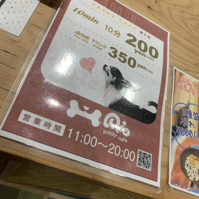 子犬カフェ RIO 下北沢店