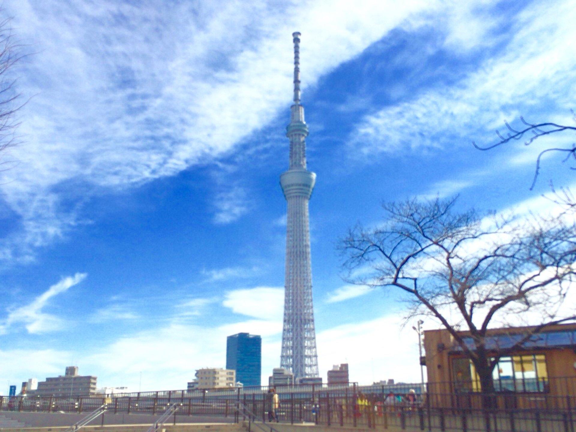 東京観光!絶対ハズさない、おすすめ観光スポット40選