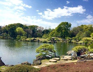 【東京のオアシス清澄白河】深川の商店街を散策後は庭園鑑賞。おいしい深川めしを食しリフレッシュ!