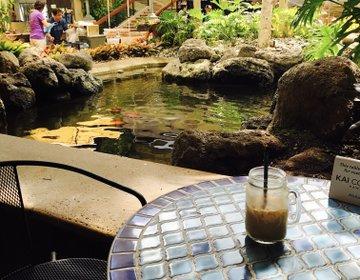 ハワイの本当に美味しいコーヒーが飲めるお洒落カフェ。朝食にも。ハイアットのkai coffee
