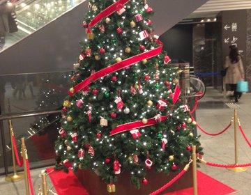 【クリスマスに見たい!】デート等で見に行きたい都内のおすすめクリスマスツリー3選
