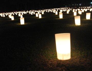 【燈花会2016】幻想的な奈良の夏祭り「燈花会」へ♡奈良の夏デートの定番は燈花会で決まり!