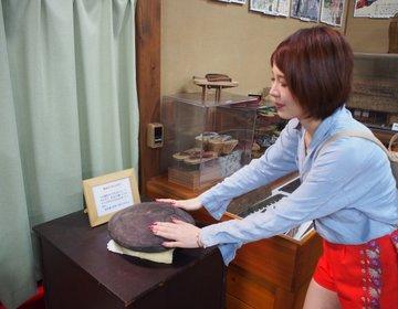 「願いが叶う石」はこちらです。伊豆高原のおもしろ博物館へいざ潜入!