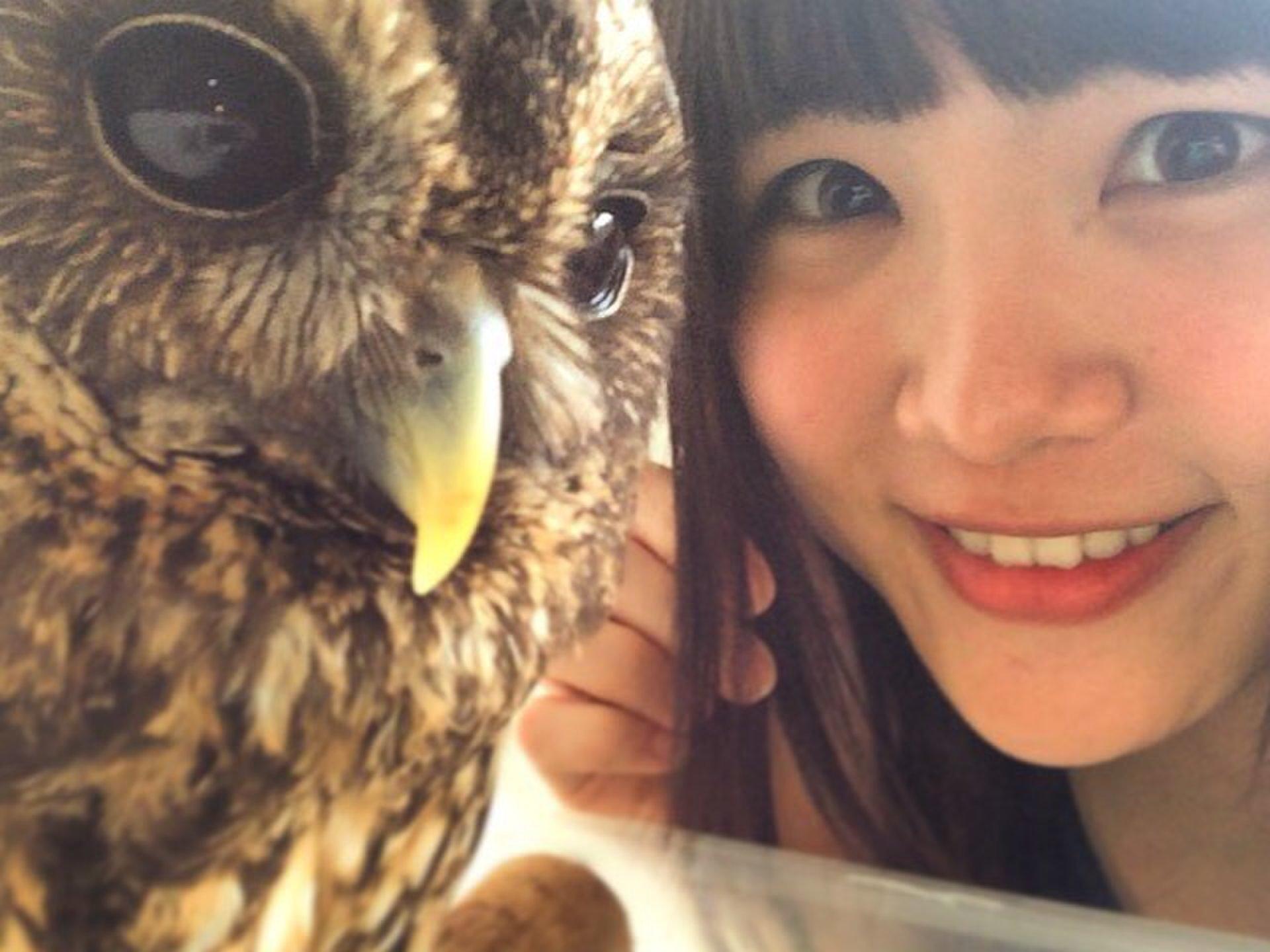 フクロウ・ハヤブサに癒される!名古屋の動物カフェ「アニマルカフェ&バー ZOO」♡