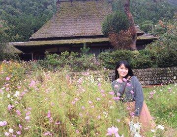 """【関西】自然いっぱいの""""京都・美山""""で癒しのデートを満喫♩"""