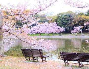 【関西の春デートはここで決まり!】満開の桜が咲く湖畔を眺めてふたりっきりの時間を楽しもう♡