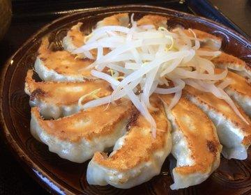 げんこつハンバーグに浜松餃子!磐田で食べて飲んで♪地元民ご用達の人気店3選!