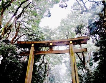 東京が雪だ〜!白銀の世界に変わった明治神宮へ行ってみよう。