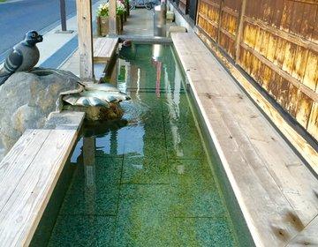 【温泉県山形の赤湯温泉へ】上杉家の大名風呂を楽しんだら山形県でも大人気の辛味噌ラーメンを!
