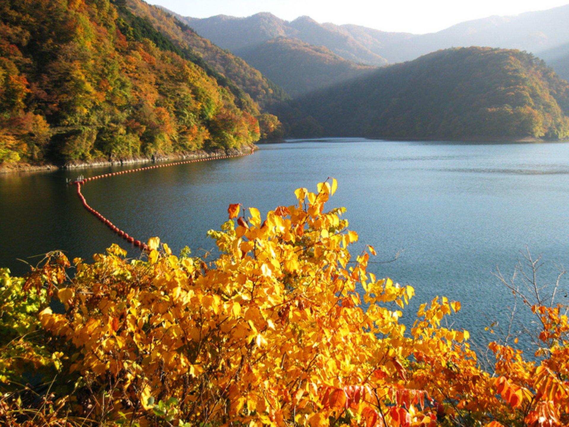 【9月になったね、デートどこ行こう?】秋の醍醐味と言えば紅葉、秋に使うのは味覚ではなく視覚!関東・紅葉スポット特集です。