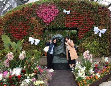 日本最大級のハーブ園でのんびりな1日を過ごそう♪【神戸布引ハーブ園】