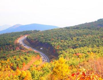 嗚呼、秋深し。紅葉と絶景をめぐる福島ドライブスポット!東北の自然を体験しよう。
