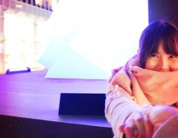 新宿クリスマスデート!手づかみシーフード「ダンシングクラブ」からのサザンテラス絶景イルミネーション