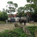 よこはま動物園 ズーラシア