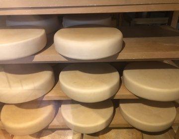 チーズ専門家が巡る軽井沢と旬の美術館ニューアートミュージアムを訪れる(前半)