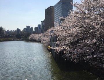 【外濠通りの桜ドライブデート】桜の季節も終盤!彼女も喜ぶこと間違い無しの桜観賞ドライブ☆
