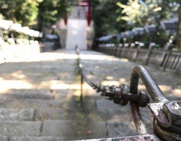 運気激上げしたい☆☆☆愛宕神社参拝からの超爽快な早朝野外ヨガ@虎ノ門ヒルズからのお得ランチ