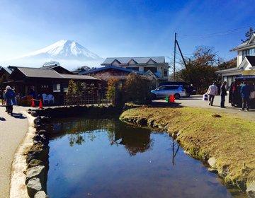 【完全保存版】世界遺産富士山の麓で大人気の観光スポット忍野八海8つの泉巡り!