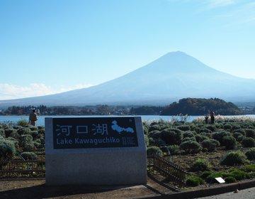"""【山梨旅】「大石公園」と言えば""""ラベンダー""""だけど、秋の富士山&紅葉やススキの景色も美しい!"""
