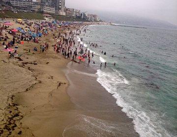 ロサンゼルス旅行☆レドンドビーチの海を見渡せる美味しいメキシカンレストラン!el torito