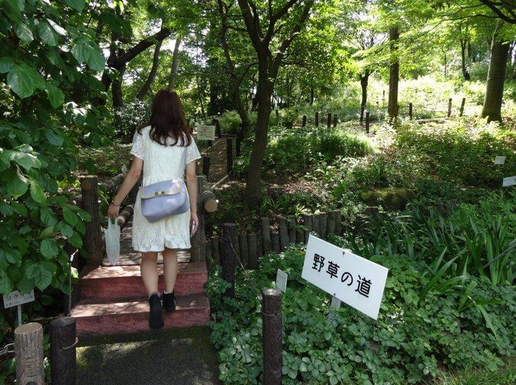 散歩 東京