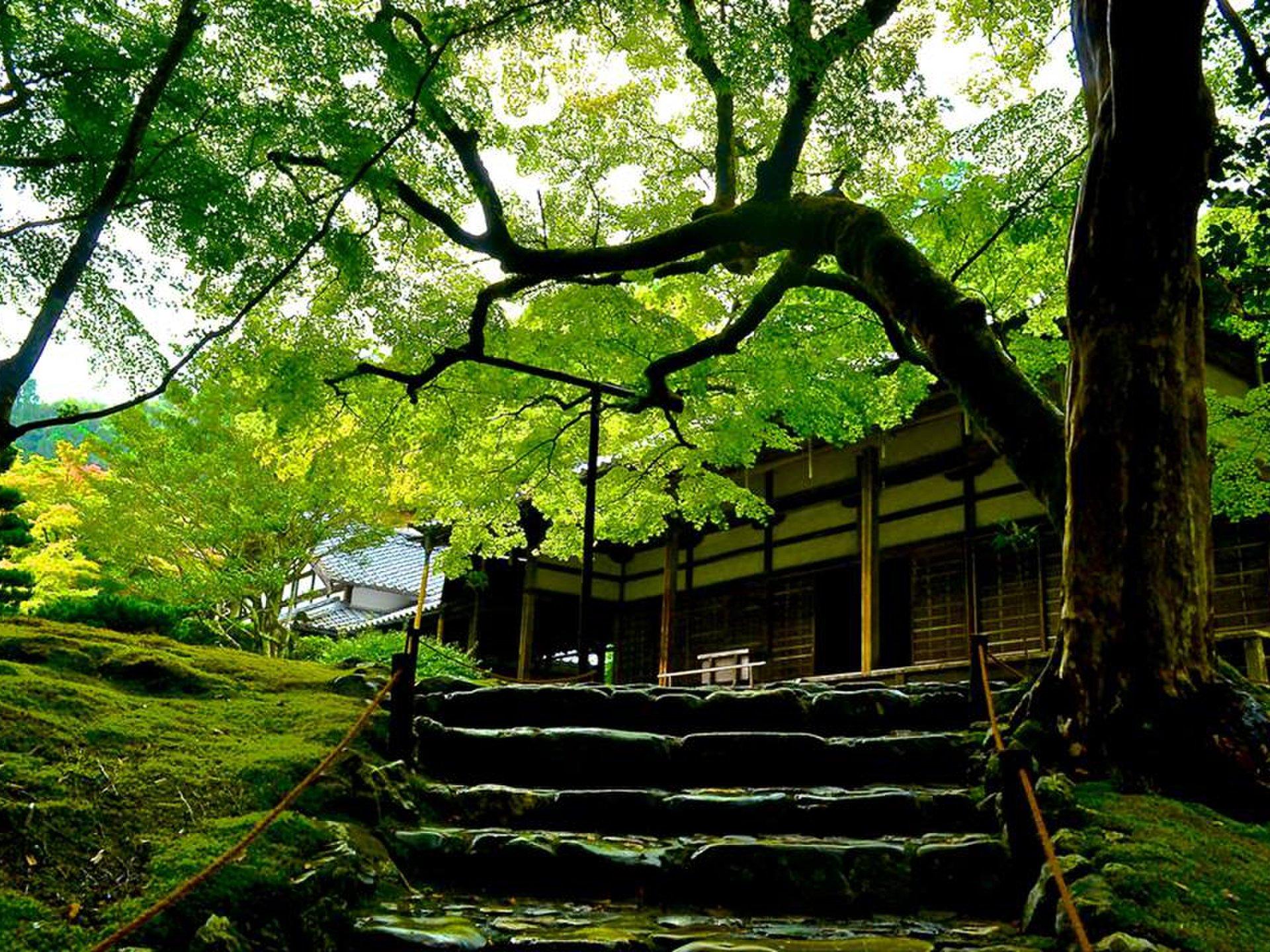 観光旅行で行きたい関西♪近畿地方にある世界遺産を紹介します!