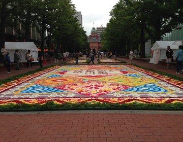 ❀札幌フラワーカーペット2015❀ 道庁赤れんが前「アカプラ」に広がる花びらのじゅうたんが素敵♪