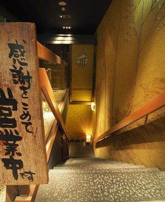 初つぼみ 渋谷店