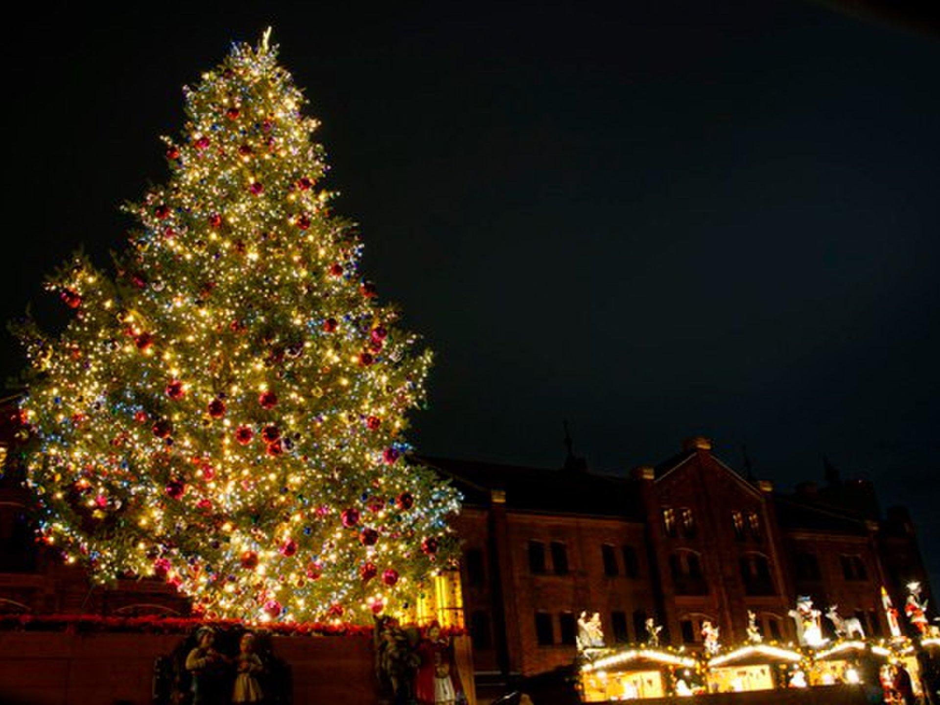 好きな人と行きたいデートスポット!「横浜赤レンガ倉庫」巨大ツリーとクリスマスマーケット♪