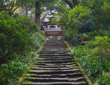 【鎌倉さんぽ】古都鎌倉を歩く!鎌倉七福神を回ってみよう♪「江島神社」から「浄智寺」へ♪