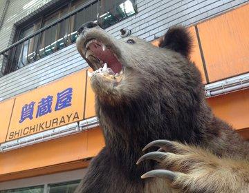 【札幌・大通周辺で暇潰し】ぼっち必見!1人でも800円で充実した昼下がりが過ごせちゃう方法!