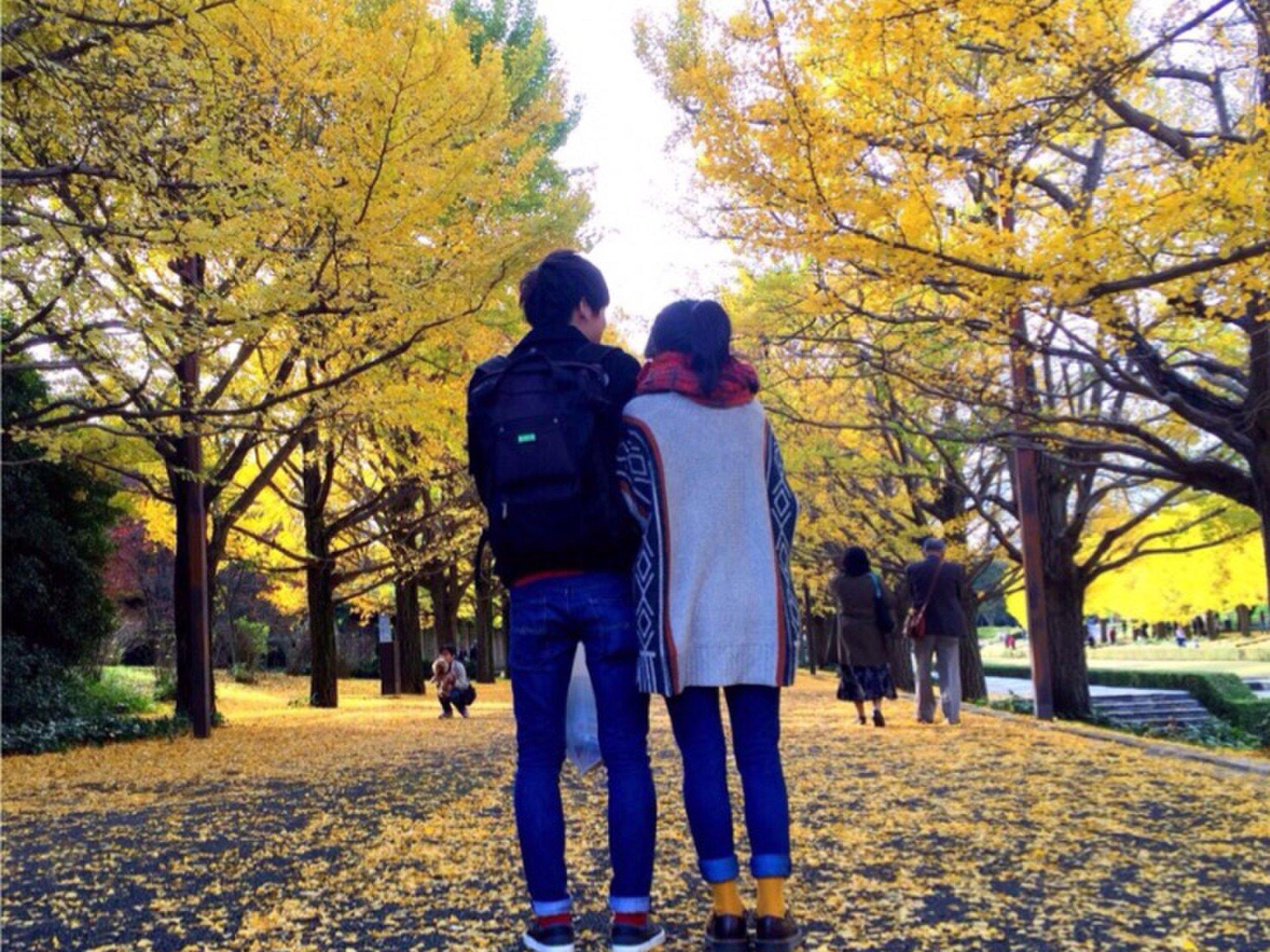 【色を楽しむ秋】色鮮やかな秋のお出かけスポット!東京都内から日帰りOK。