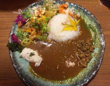 【大阪絶品カレー】ボタニカリーの鮮やかなスパイスカレーは行列必須!並んでまでも食べたいカレーとは!?