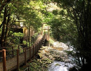 【静岡・おでかけ・グルメ】東京から日帰りで行ける絶景スポット!【河津七滝】ってどんなとこ?