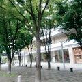 グランモール公園円形広場