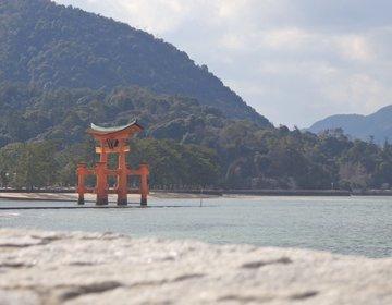広島市大満足観光♪広島のおいしいところ全部どり!広島でしておきたい6つのこと!