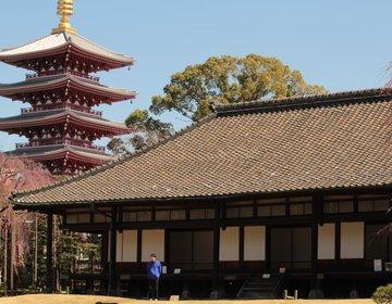 一年のうちこの時期だけしか入れない!浅草寺にある穴場の庭園。