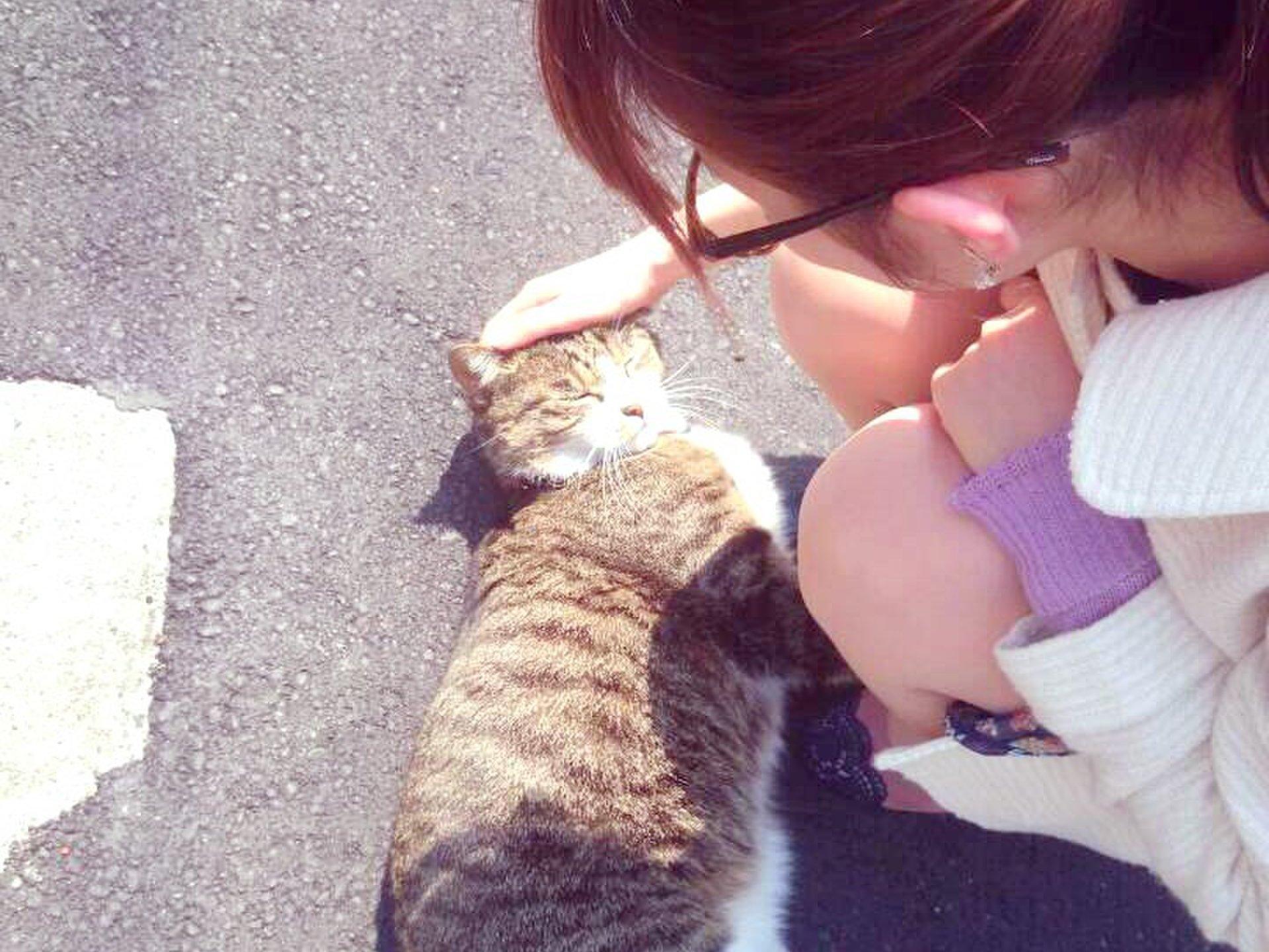 【猫の多い町、目白をお散歩】駅から5分ほど歩くとそこは猫の町!?涼しい秋はお散歩デートがおすすめ!