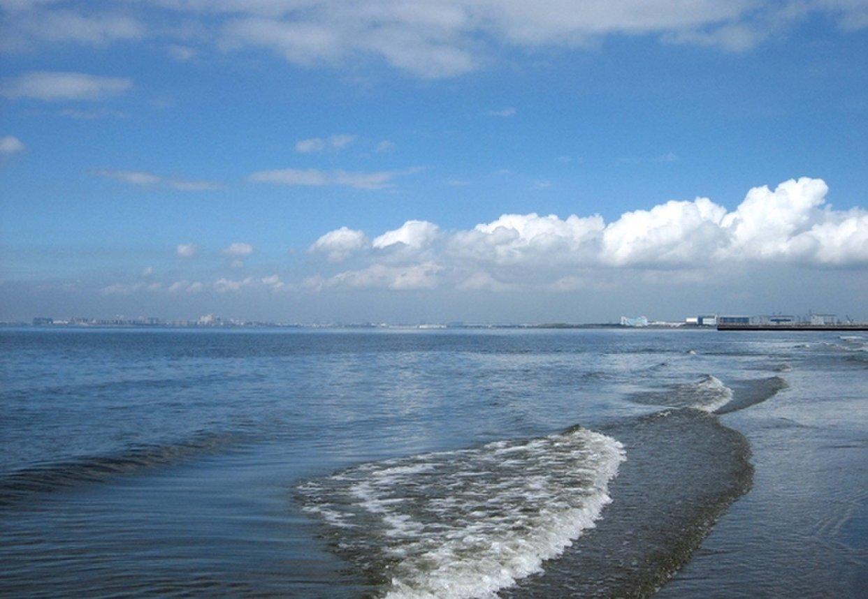 幕張海浜公園 幕張の浜