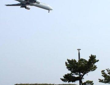 【東京都内の公園デートスポット】飛行機の見える『城南島海浜公園』がおすすめ!