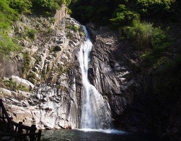 【休日登山にピッタリ六甲山系】子供でも楽しめる神戸の登山