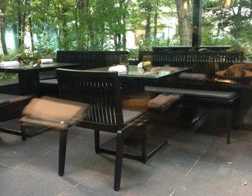 オシャレな人は知ってる!【森の自然と上品な静けさ】を味わえる東京駅近郊の穴場カフェ3選!