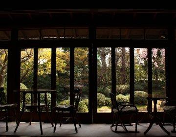 【東京厳選・隠れ家カフェ】縁側カフェで過ごす、古き良き奇跡の空間
