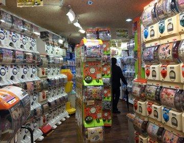 名古屋・大須にやばすぎる専門店「最大級のガチャガチャ店」