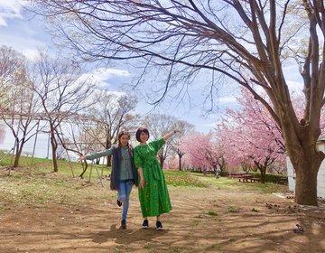 【新宿発・山梨旅行コスパ最強なバスツアーを発見】食べまくり&お土産満載のオリオンツアー