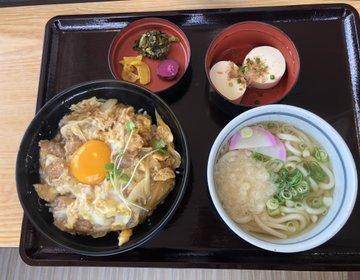 北海道の人も関西の人も絶賛した美味しいうどんつゆ。一回食べてみんしゃい麺勝のうどん♪