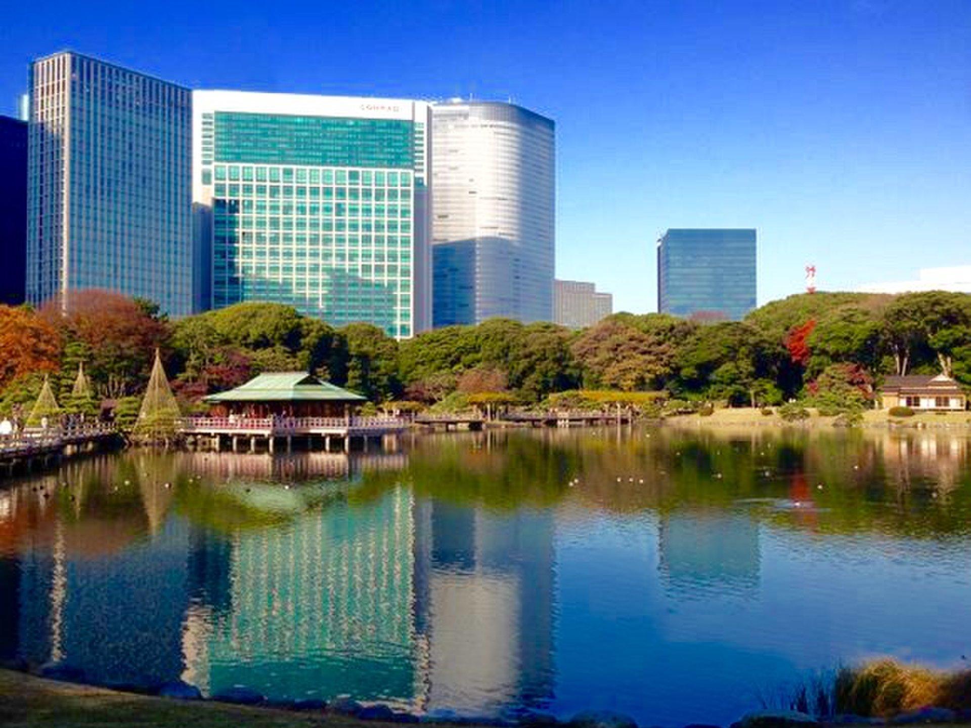 雨の日でも風情あり!東京都内の日本庭園デートで和を感じよう♡