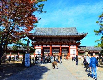 【関西・紅葉】1人旅にオススメ!奈良の人気観光スポットで秋を満喫しよう!