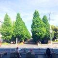 日吉駅 (Hiyoshi Sta.)